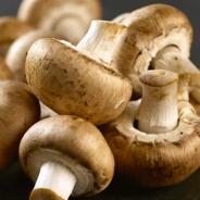 champignon-paris-e1521196537501.png