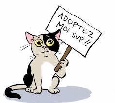 Adoptez-moisvp